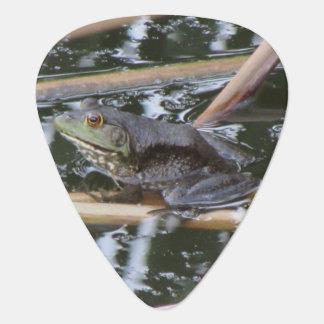 American Bullfrog Guitar Pick