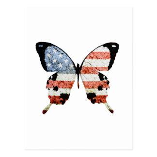 American Butterfly Postcard