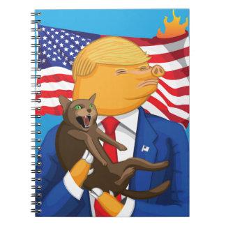 American Catastrophe Notebook