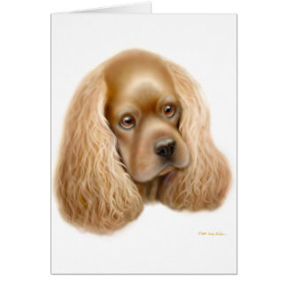 American Cocker Spaniel Card