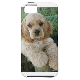 American Cocker Spaniel Dog And The Green Fern iPhone 5 Cases