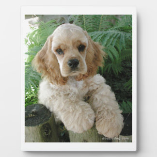 American Cocker Spaniel Dog And The Green Fern Plaque