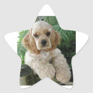 American Cocker Spaniel Dog And The Green Fern Star Sticker