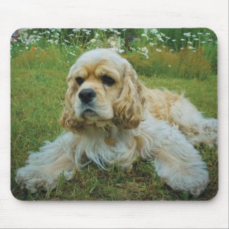 American Cocker Spaniel Dog Mouse Pad