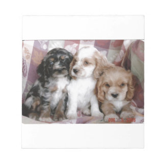 American Cocker Spaniel Puppies Notepad