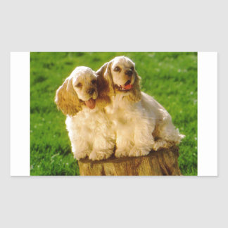 American Cocker Spaniel Puppies On A Stump