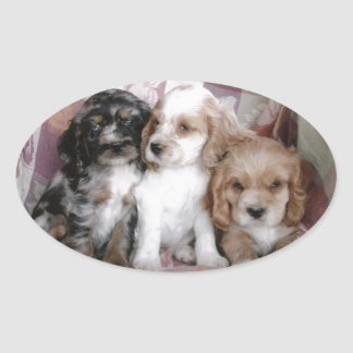 American Cocker Spaniel Puppies Oval Sticker
