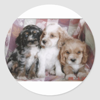 American Cocker Spaniel Puppies Round Sticker