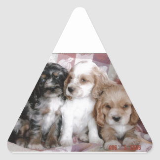American Cocker Spaniel Puppies Triangle Sticker