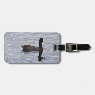 American Coot Reflecting Luggage Tag