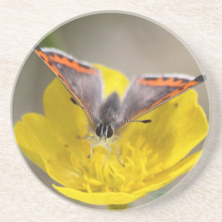 American Copper Butterfly Drink Coaster