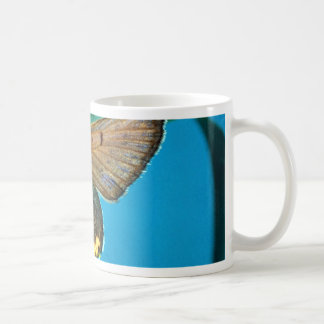 American copper butterfly coffee mugs