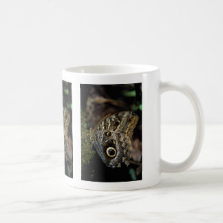 American copper butterfly coffee mug