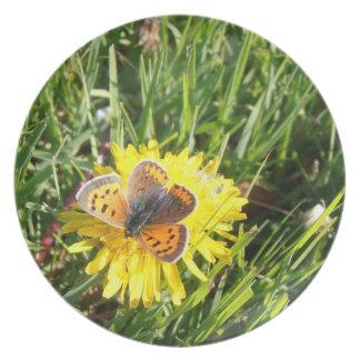 American Copper Butterfly plate