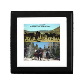American Cowboys on trip to TAME Mustang Horses Jewelry Box