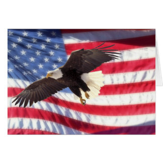 American Eagle and Flag Note Card