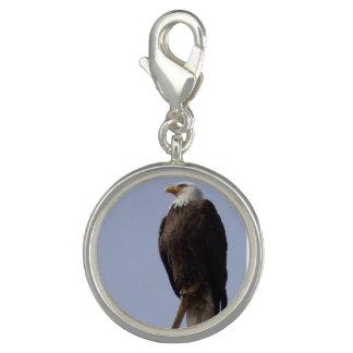 American Eagle Charm