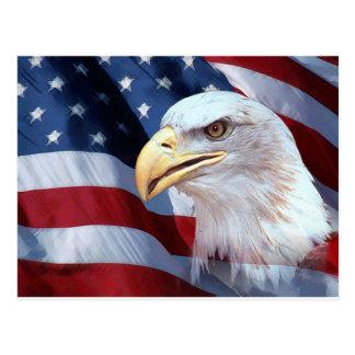 American Eagle Postcard