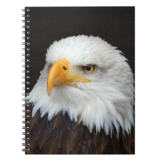 AMERICAN EAGLE - WEIS HEAD SEA-EAGLES by Glineur Notebooks
