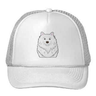 American Eskimo Cartoon Portrait Hat
