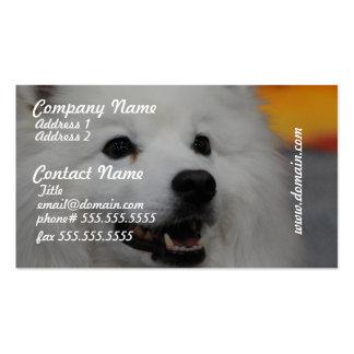 American Eskimo Dog Business Cards