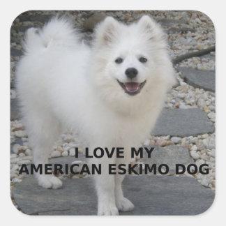 American_Eskimo_Dog_love w pic Square Sticker