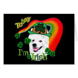 American Eskimo Dog St Patricks Card