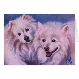 American Eskimo Dogs Card