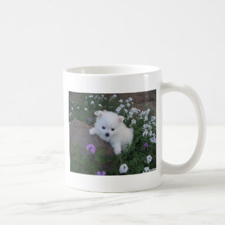 American Eskimo Puppy Dog Coffee Mug