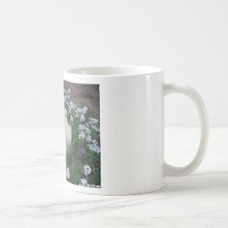 American Eskimo Puppy Dog Coffee Mug