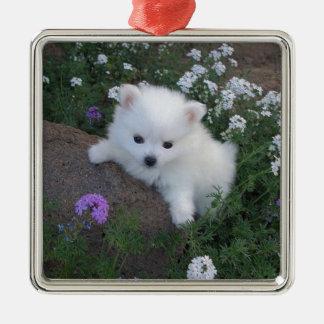 American Eskimo Puppy Dog Metal Ornament