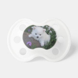 American Eskimo Puppy Dog Pacifier