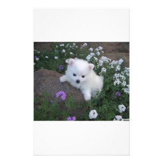 American Eskimo Puppy Dog Stationery Paper