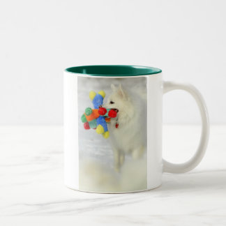 American Eskimo with Colorful Toy Mug