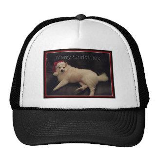 American eskimos hat