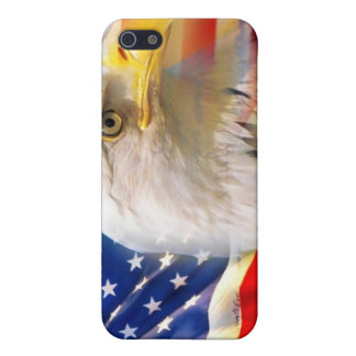 American flag and eagle Iphone case iPhone 5/5S Cases