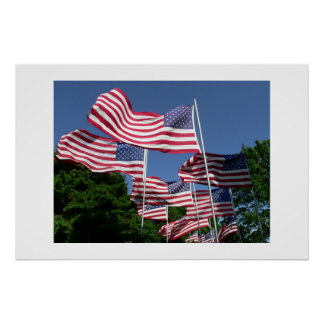 American Flag Display Poster