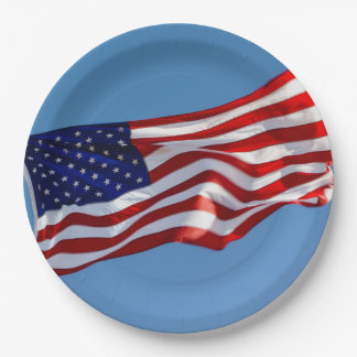 American Flag in the Wind 9 Inch Paper Plate