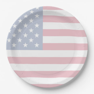 American Flag Patriotic Paper Plates 9 Inch Paper Plate