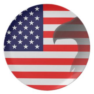 American Flag Patriotic Plate
