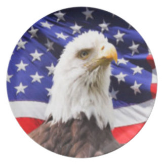 American Flag with Eagle Plate