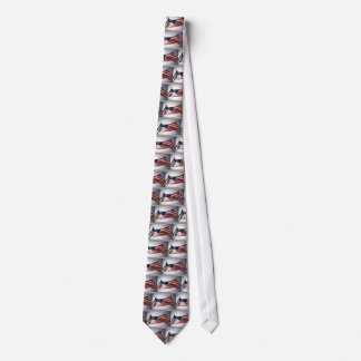 American Flag with Sun in the Background Tie