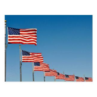 American Flags Postcard