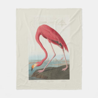 American Flamingo by J. J. Audubon Fleece Blanket