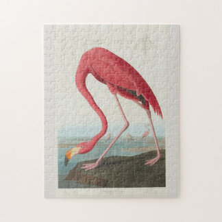 American Flamingo by John James Audubon 1838 Jigsaw Puzzle