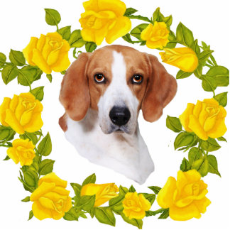 American Foxhound and Yellow Roses Photo Sculptures