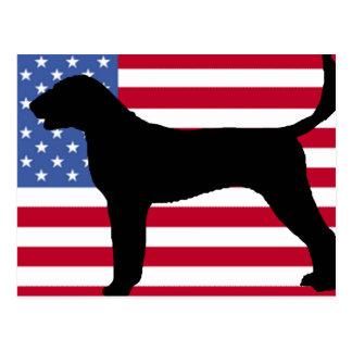 american foxhound silhouette usa-flag.png postcard