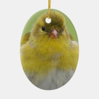American Goldfinch Ceramic Oval Ornament