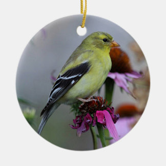 American goldfinch - female round ceramic ornament
