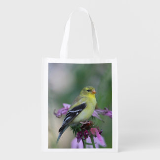 American goldfinch in the garden grocery bags